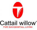 Cattail Willow